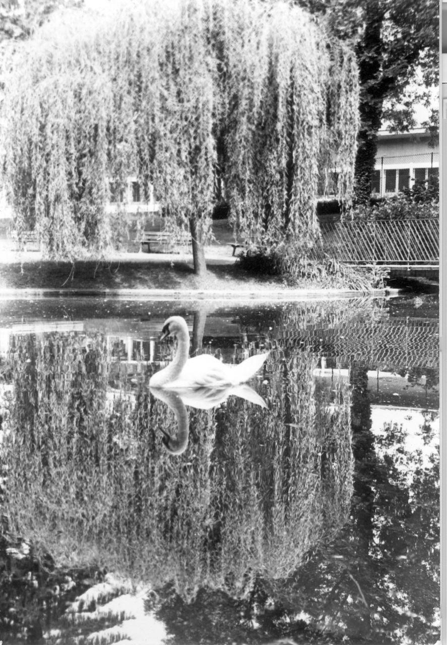 Roger PHILBERT 1968 Grenoble