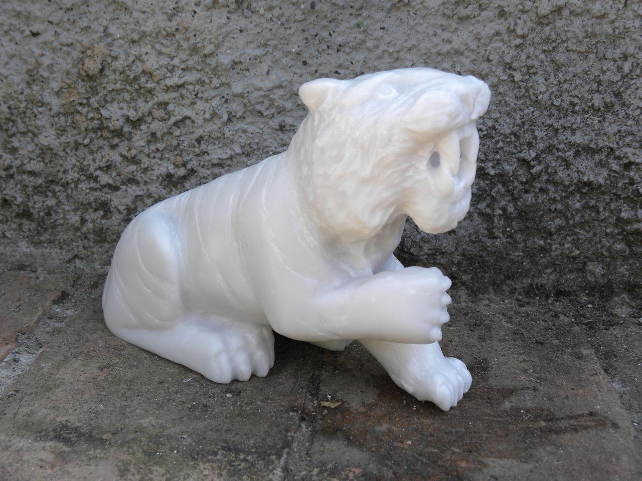 SaBra et Cigna Tigre blanc