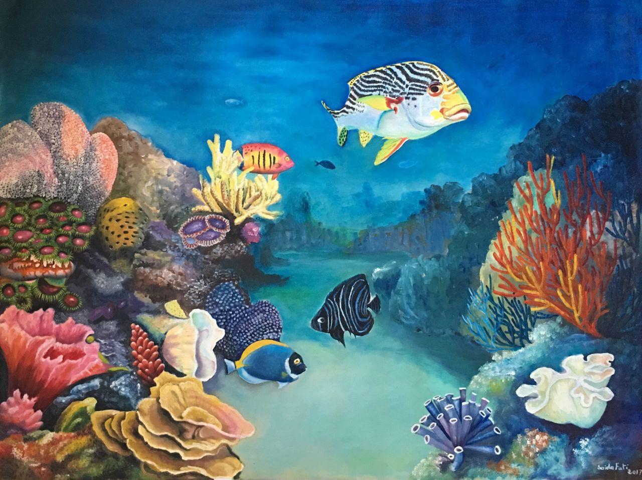 Saida Fati  سعيدة فاتي aquarium