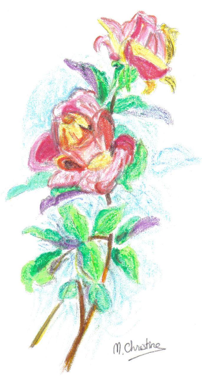 Schmucker Marie-Christine Roses
