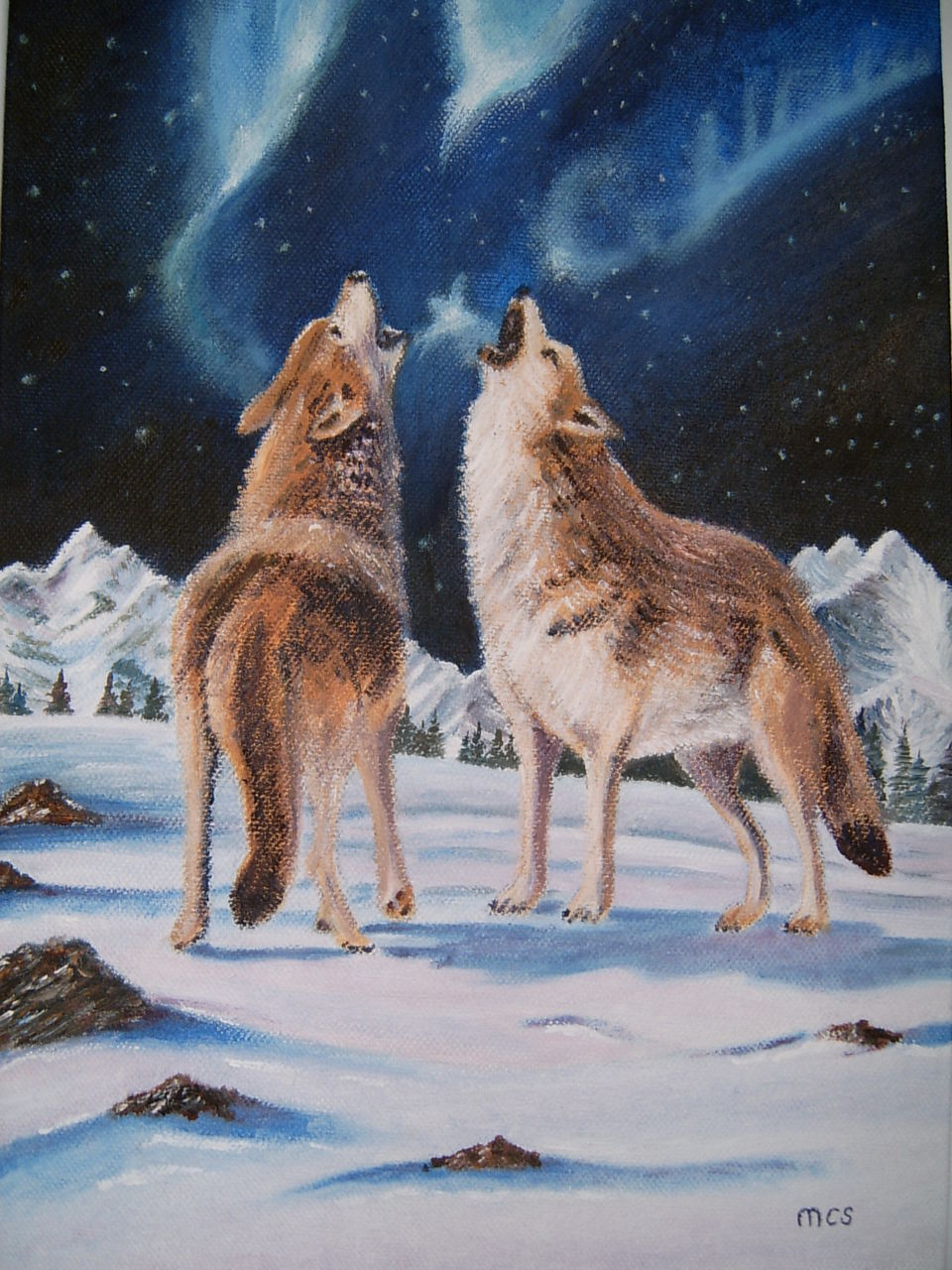 Schmucker Marie-Christine Les loups
