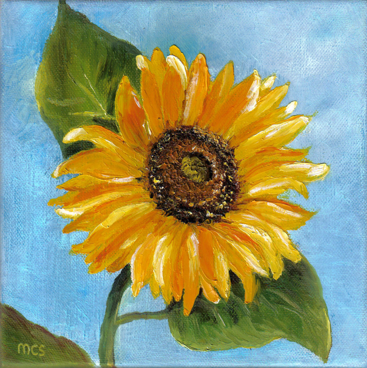 Schmucker Marie-Christine Tournesol