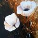 Schmucker Marie-Christine - Fleurs blanches