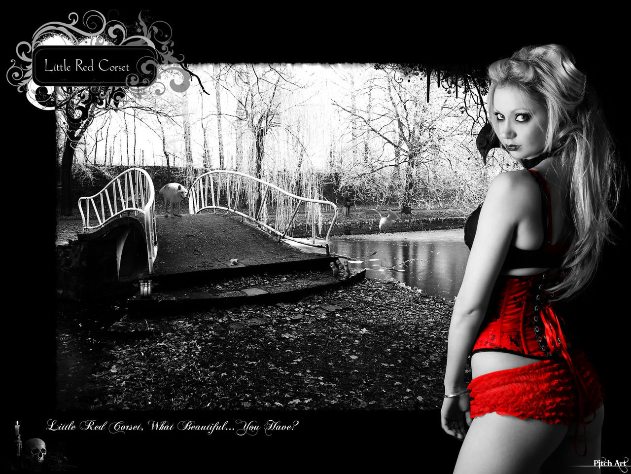 Studio Pitch Art Little Red Corset