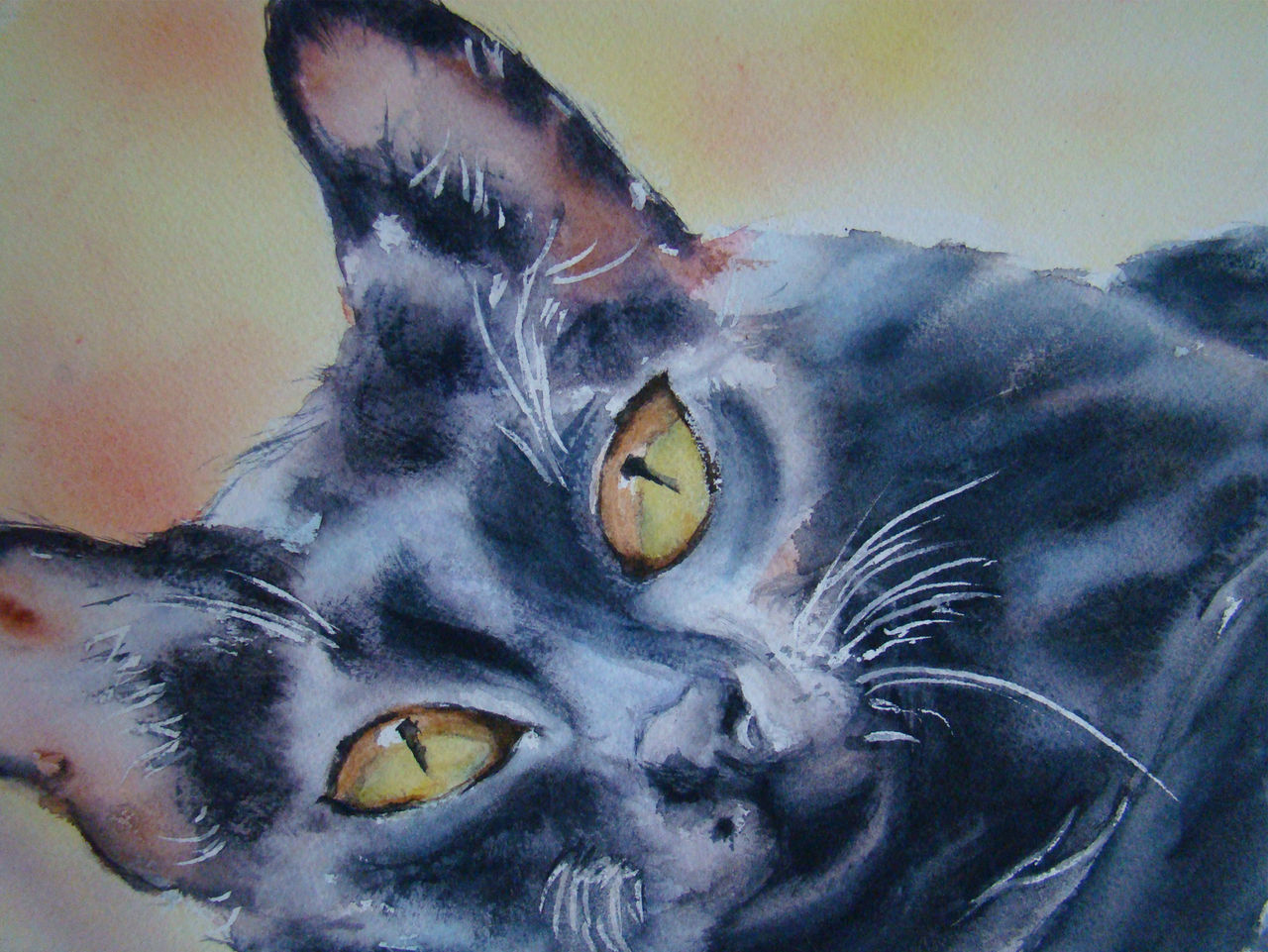 Sylviane MOREL CHAT NOIR aquarelle