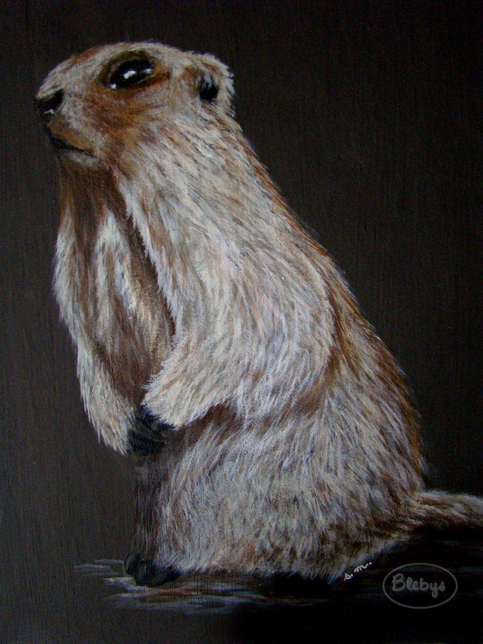 Sylviane MRL Marmotte