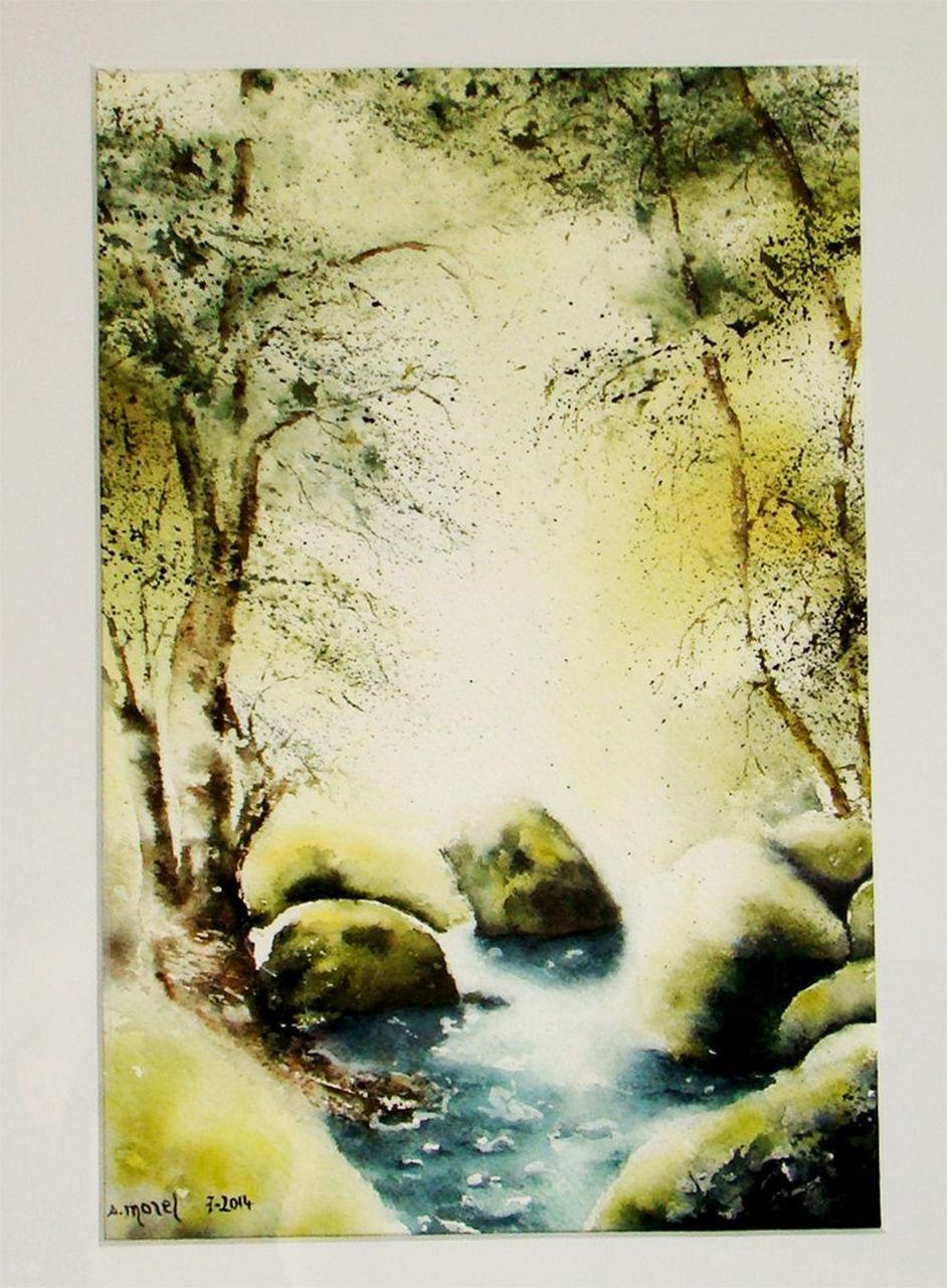 Sylviane MRL Sous bois en pleine lumière