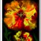 TCHERNOBROVKINE Alexandre - Fleurs de Juin n° 5