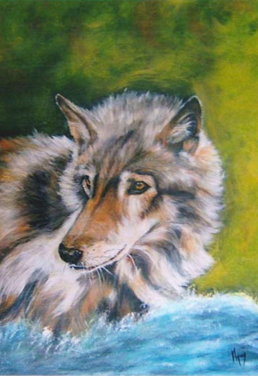 veronique AGUILLON Loup blanc