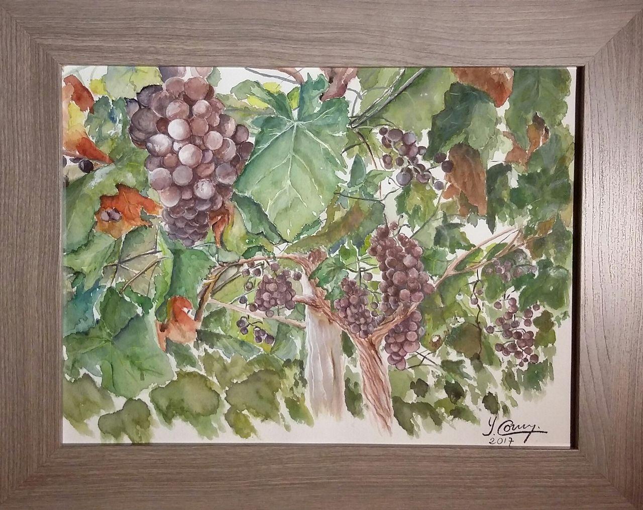 YolandedeComblesdeNayves 208-raisins aquarelle 30 x 20
