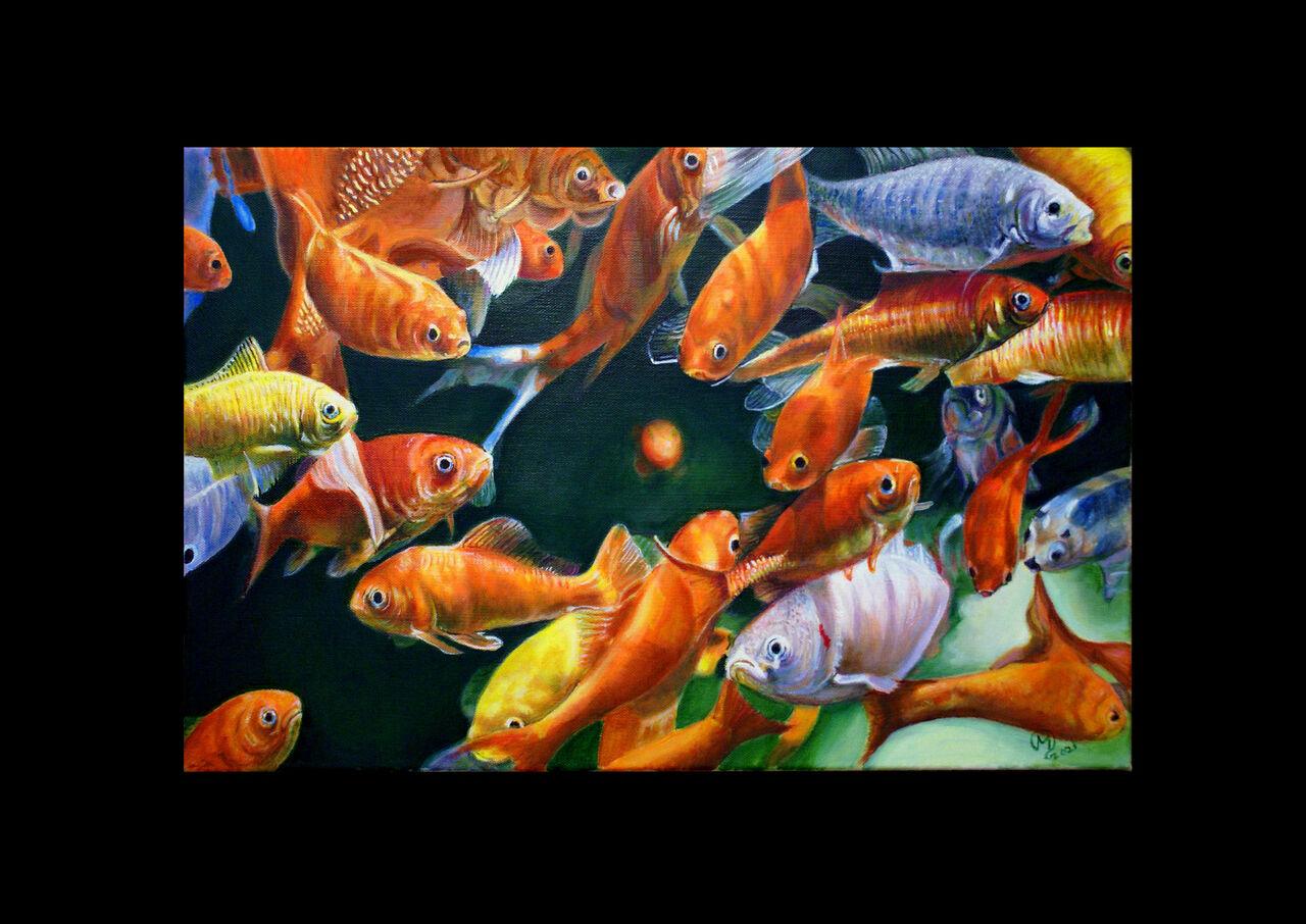 yves molac aquatique
